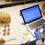Analizaron Momias encontradas en Tierra Amarilla
